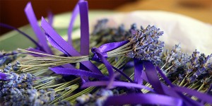 Many Benefits of Lavender and Lavender Oil